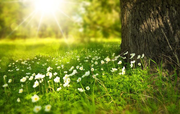 equinozio di primavera significato